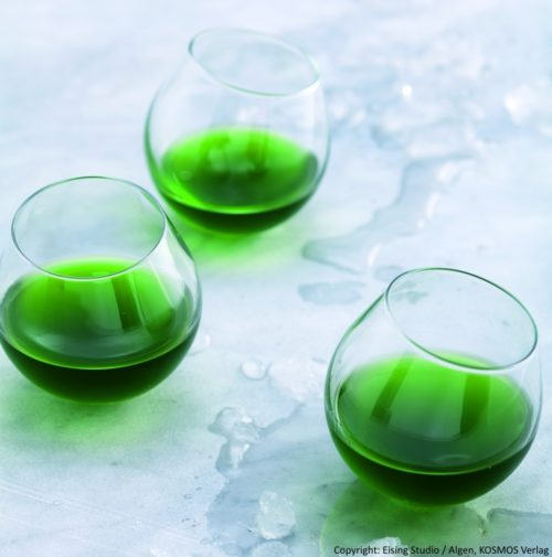 gr ner chlorella wodka mit heunote algomed. Black Bedroom Furniture Sets. Home Design Ideas