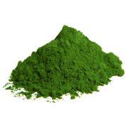 ALGOMED® Pulver aus Chlorella vulgaris Mikroalgen